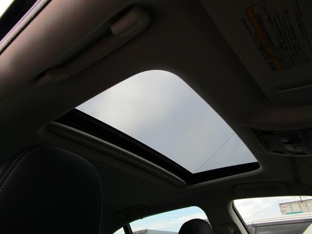 サンルーフ付きなので車内を明るくしてくれます!