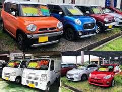 軽自動車からハイブリッド、商用車など幅広く取り扱いしております!店頭に無い車種は全国から取り寄せる事も可能です!