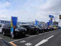 展示台数40台のU-car展示場です。