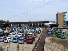 軽自動車からセダン、ミニバンに至るまで、車選びを楽しんでいただけますよう広々としたスペースに豊富に展示いたしております。