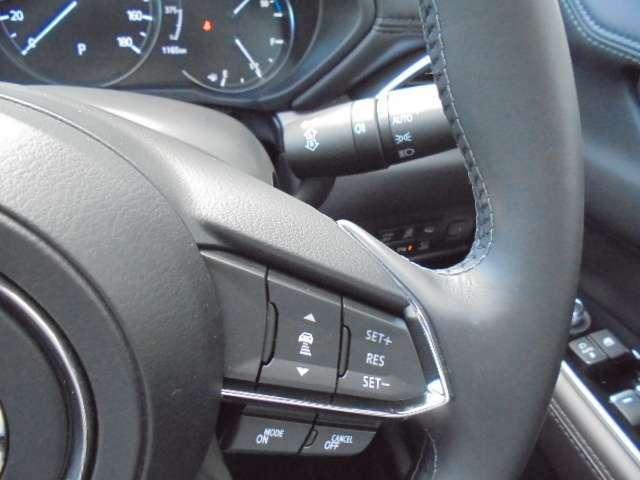 全車速追従式レーダークルーズコントロール装備(^^♪