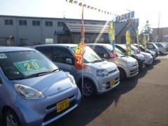 展示場には常時約20台の車たちがアナタのご来店を待っています