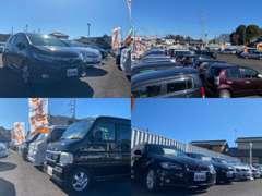 展示場 多種多様のお車を揃えております。グループ共有在庫の中からもお選びいただけます。