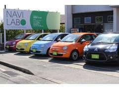 常時20台以上の在庫車を展示中! お客様駐車場も完備しています