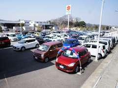 広い展示場でゆっくり車をご覧になれます!