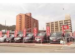 日産車のみならず輸入車など常時展示在庫台数130台ございます。