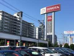当店は、新車、中古車、サービスの総合店舗です。スタッフ一同、全力で車探しを応援致します。