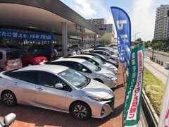 当店は新車、中古車、サービスの総合店舗♪約50台の新車・中古車を展示しております。