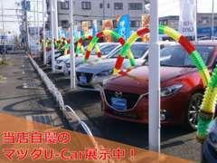 マツダ車をはじめ多くのお車を展示しております。お客様にピッタリのお車が見つかるかも。