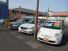 輸入車やサルーンも若松にお任せください!展示場にないお客様のご希望の車も迅速にお探しします!!