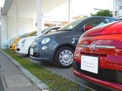 常時15台以上の上質な中古車を展示しております。グループ全体では50台以上の在庫をご案内可能です。