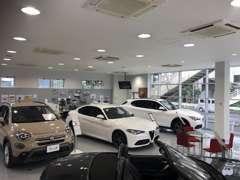 明るく綺麗なショールーム内には、最新の展示車と商談スペースをご用意!