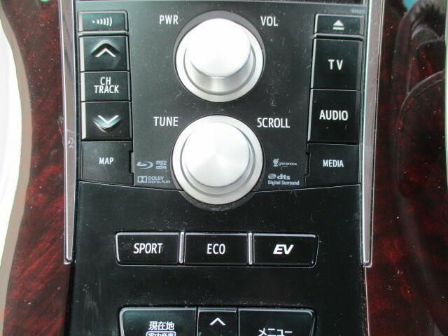 ナビゲーションを操作するパネルになります。そのほかにエコモード、スポーツモードに調整できるボタンがあります。
