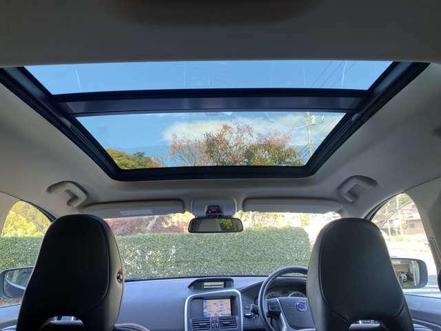 大きなサンルーフで車内が非常に明るいです!