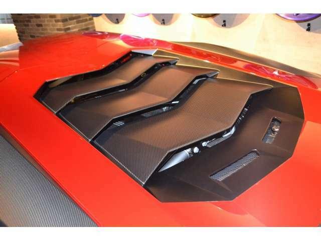 エンジンフードもカーボンファイバーが使用さてており、とてもスポーティーな雰囲気です!