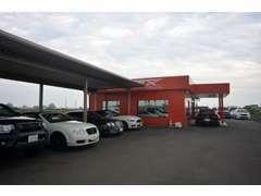 総面積400坪の展示場内外に特選車両を多数展示しております。