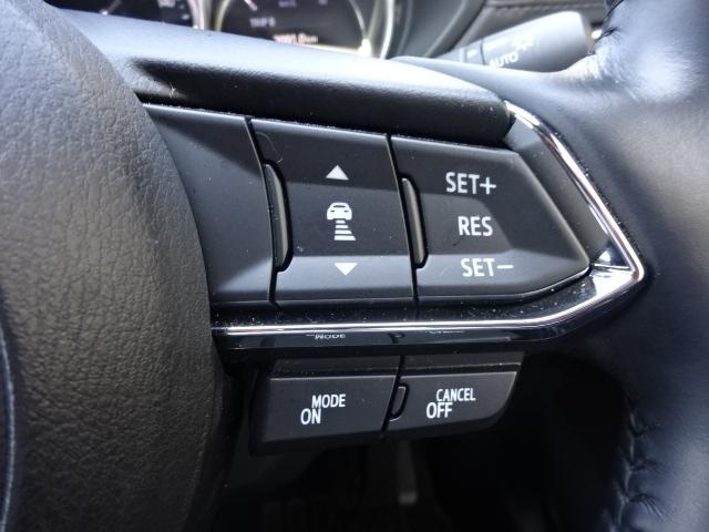 ミリ波レーダーで先行車の速度や車間距離を認識して、ドライバーがアクセルやブレーキを操作しなくても設定した車間距離を維持し、車両の速度をコントロールしてくれます。追従可能な速度は約0~115km/h。