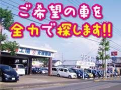 行ってみたらお目当ての車が売約済・・!ご安心下さい♪全国からお客様の車をお探し致します。