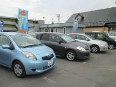 広い展示場にて多数のお車を取り揃えております。