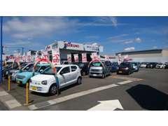 色々な車種からお客さまに最適な1台を提案させて頂きます!