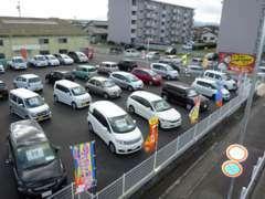 【展示場】常時展示車両がなんと!20台前後並んでおります!