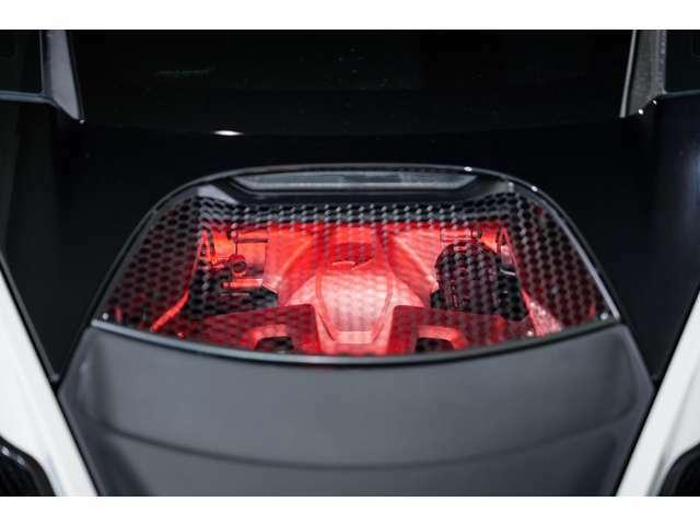 スタンダードグレードには通常装備されていないエンジンのライトアップ機能がこちらには装備されております。