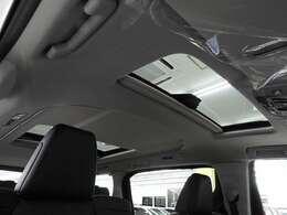 メーカーオプションとして、サンルーフ、デジタルインナーミラー、スペアタイヤ、アクセサリーコンセント