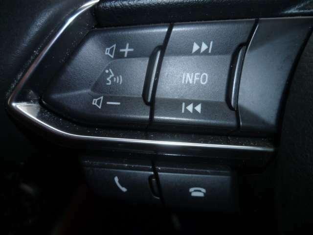 手元で操作が出来るオーディオスイッチやハンズフリースイッチを装備。