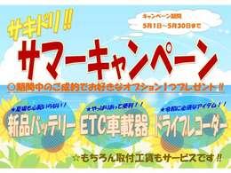 ☆サキドリ!!サマーキャンペーン☆ ご成約頂いたお客様に、3つの中から1つお好きなオプションプレゼント♪