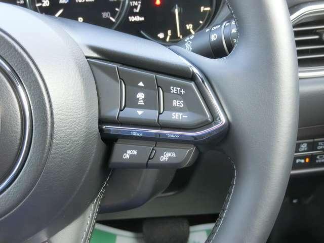 スマートブレーキサポート&全車速追従機能付レーダークルーズコントロール!