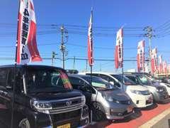 展示場スペースには買取や下取りをさせて頂いたお車がたくさん並んでいます。16号沿いの赤い看板が目印です。