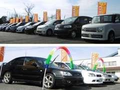 ▲軽自動車~スポーツカーまでこだわりの中古車を取り揃えております。輸入車も得意です!