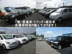 広い展示場に幅広いお車を取り揃えております。