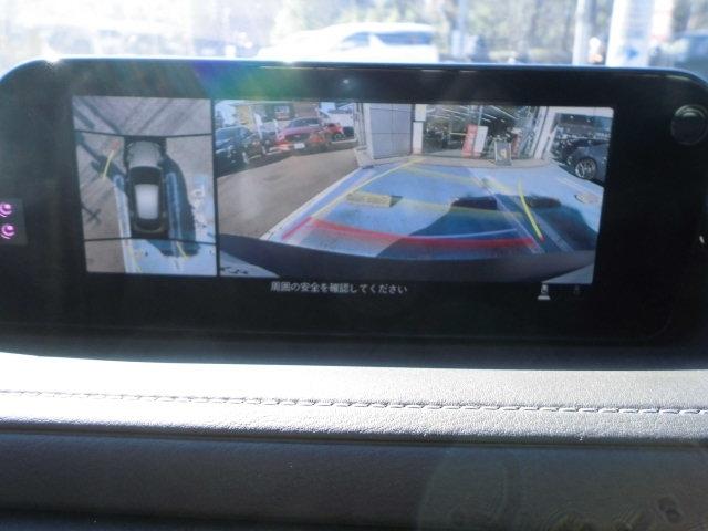 360°ビューカメラの映像