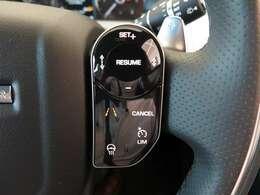ドライバーアシストパック 「アダプティブクルーズコントロール+レーンコントロール・ブラインドスポットアシスト・ハイスピードエマージェンシーブレーキ」(¥344000ー)安全機能も充実。しています。