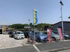 口コミキャンペーン☆口コミをしていただくだけで3000円プレゼント☆
