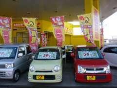 色とりどりの中古車、車種を取り揃えてお客様のご来店を心よりお待ちしております。