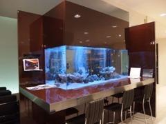 真っ白なショールームには大きなアクアリウムがございます。お車をご覧いただきながら可愛い熱帯魚で癒されてください。