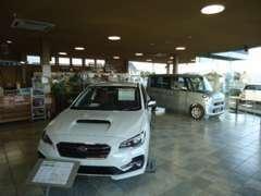 ショールームには、スバルの新車を常時展示してあります!