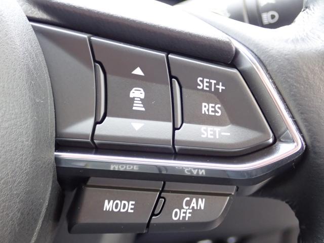 高速道路走行中のドライバーの疲労を軽減させるクルーズコントロール。速度を保ちながら走行します!