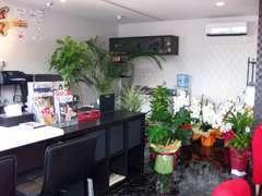 緑に囲まれた癒しの事務所です。お気軽にご来店下さい。