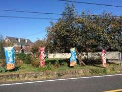 富岡方面から国道254号を来て、吉井町「黒熊」の信号100m先の左側に登り旗と小さな看板あります!