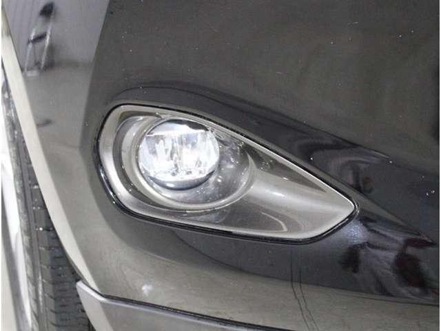 ヘッドライトでは光のあたりにくい足元をやさしく照らします。霧や雨の時には、特に重宝しますよ。