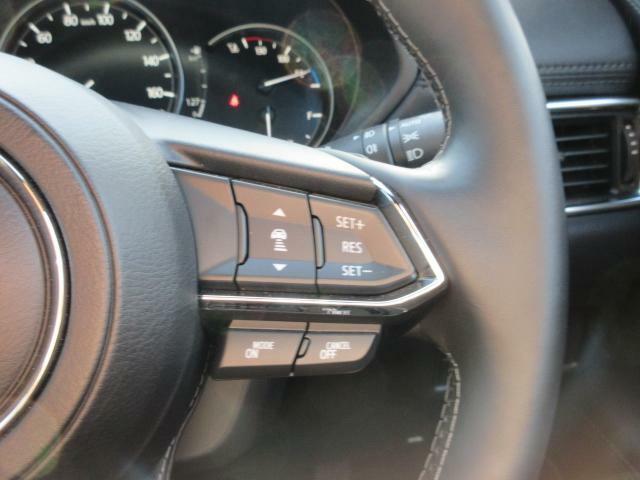 時速0~100kmという幅広い速度域で、先行車に追従可能なレーダークルーズを採用しています。