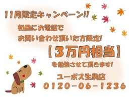 【期間限定販売】11月24日までの期間限定販売です!!お急ぎ下さい!!在庫確認はお気軽にお電話下さいませ(0120-06-1236)