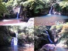 近くに四つの滝の名所があります。水が綺麗なので渓流釣りしてね
