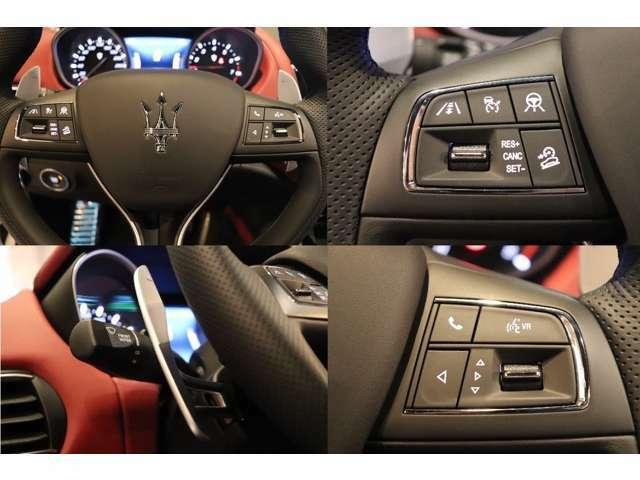 ストップ&ゴー機能付きアダプティブクルーズコントロール、ヒルディセントコントロール、レーンキーピングアシスト装着車