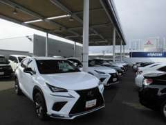 人気のレクサス車も展示中・軽自動車、コンパクトカーといった乗りやすい車も展示中!