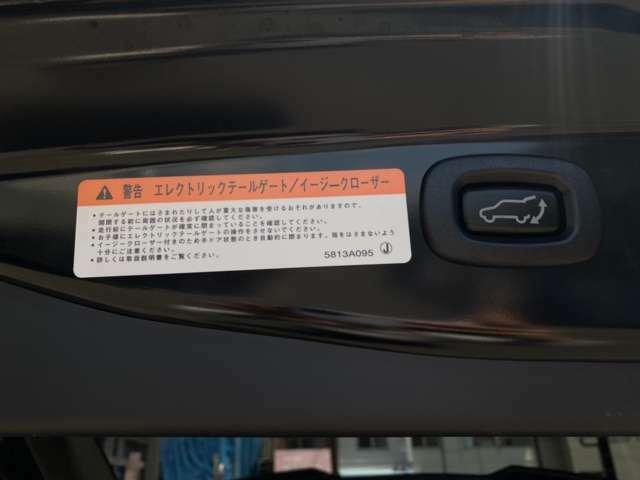 運転席側のスイッチでもリモコンキーでも開閉が出来るエレクトリックテールゲートと、ボタン一つでバックドアを閉めることができるイージークローザー搭載。