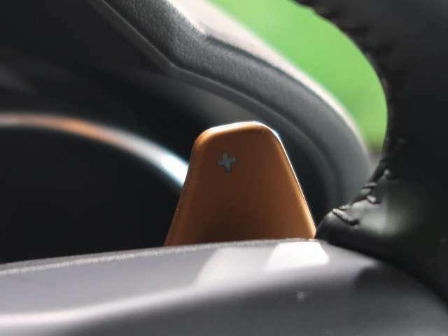 ステアリングパドルシフト『クイックなシフト操作が可能!レスポンスが高く、運転者様のギア変則にしっかりとついてきてくれます!Fタイプと一体となれる装備です。』